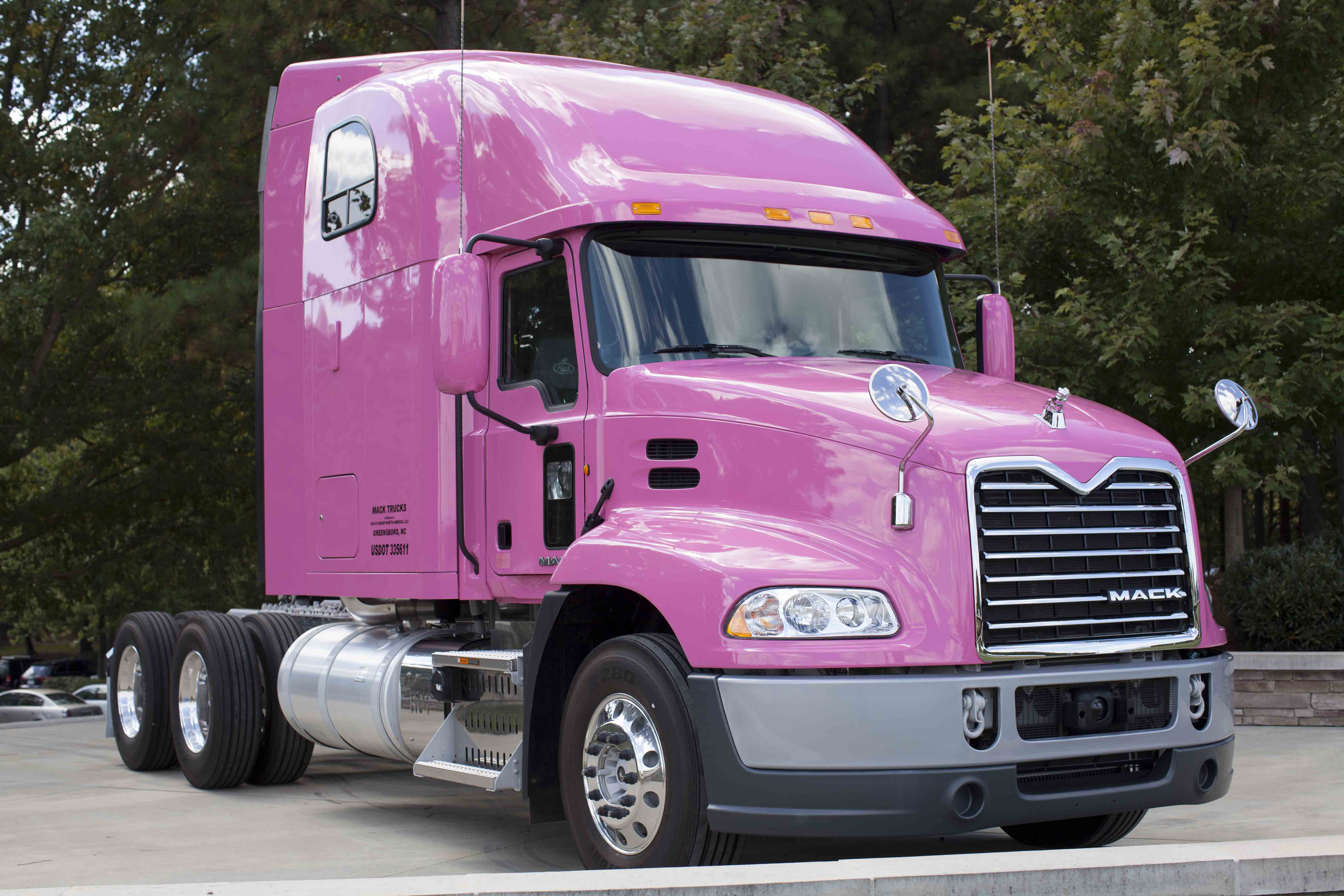 pink MACK® Pinnacle™ Axle Back model